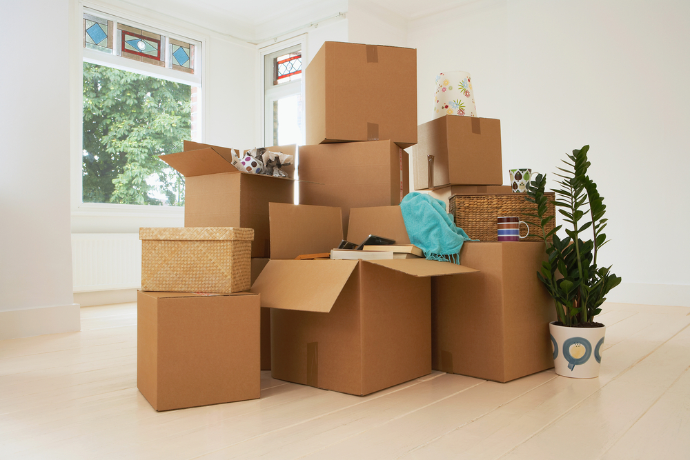 Setting up packing and moving services